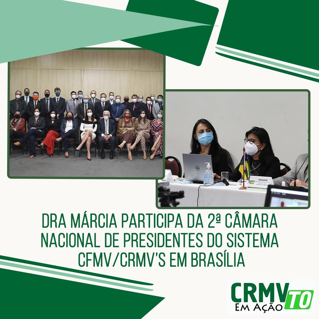 dra márcia participa da 2ª câmara de presidentes